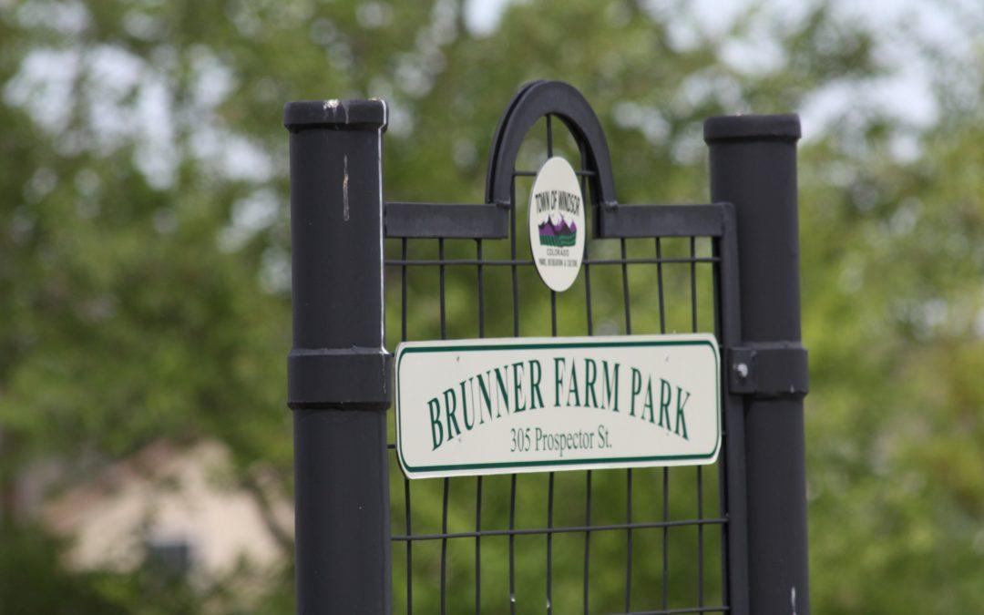 Brunner Farm Homes For Sale Windsor Colorado